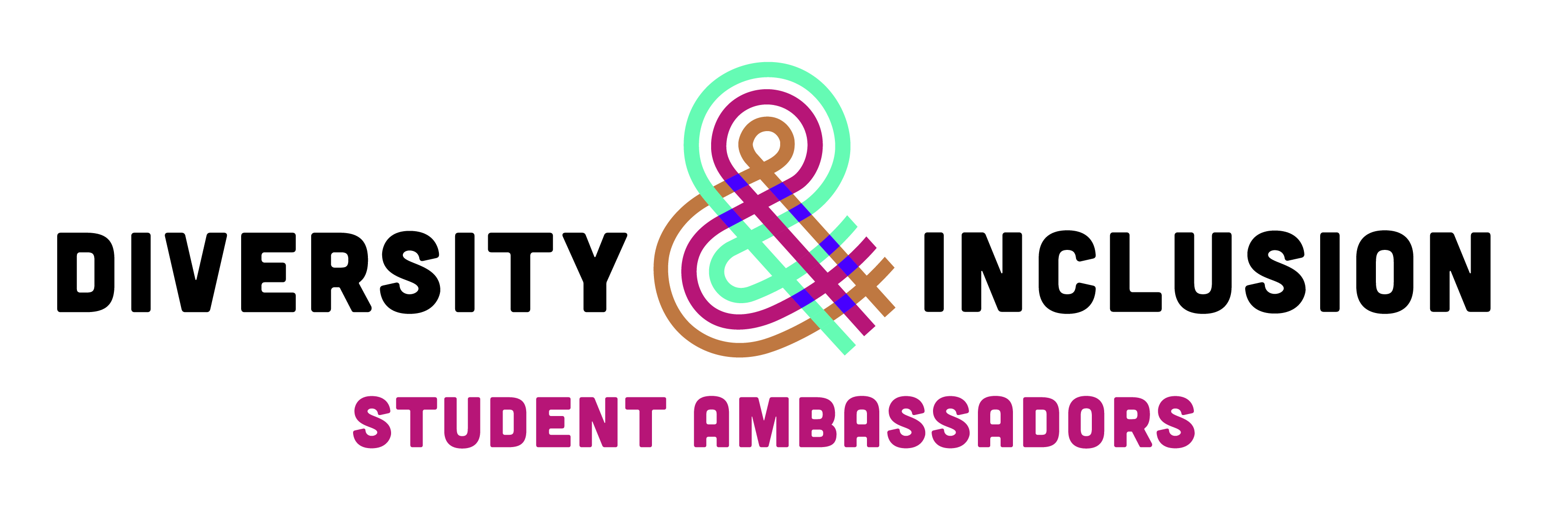 Diversity and Inclusion Student Ambassador | The University
